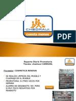 Reporte Chedraui Carrizal David Tzab 28-03-13