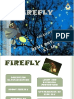 About Firefly