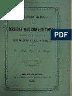 A Escravidão no Brasil - os Pensamentos de Um Espírita (Dr. Adolfo Bezerra de Menezes)