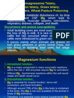 Postparturient hypomagnesemia, Grass tetany,