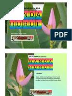 Ganda Huruf