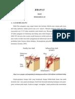 Patologi Jerawat