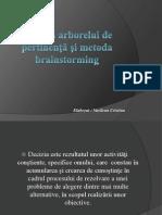 Metoda arborelui de pertinenţă şi metoda brainstorming