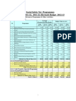 ssnp_fy13