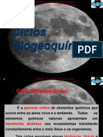 Aula 6 Ciclos Biogeoquimicos