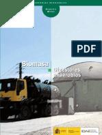 10737 Biomasa digestores .Teoria