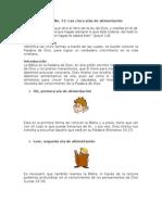 Lección No 11-vias de alimentacion