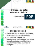 Conceitos fertilidade_Patricia.ppt