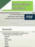 Tema 3 Principales Grupos Bacterianos