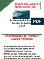Anormalidades Del Amnios y Del Liquido Amniotico (2)