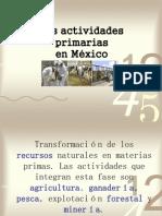 actividades-economicas-primarias-1218042768750685-9
