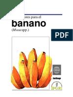 Descriptor de banano.pdf