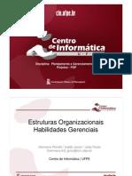 2011_2_Estruturas_Organizacionais