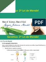 Biologia-Genética aula 3 - 2ºLei