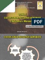 TEMA 5 Cocos Gram Negativo Aerobios