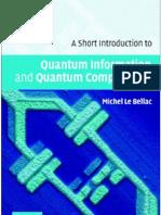 A Short Introduction to Quantum Information and Quantum Computation - Michel Le Bellac