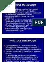 Mbs127 Slide Fructose Metabolism