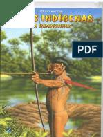 _Povos indigenas
