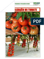 99034950 Fertilizacao Do Tomate