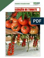 99034950 Fertilizacao Do Tomate