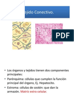 Tejido Conectivo (1).pdf