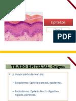 TEJIDO EPITELIAL.pdf