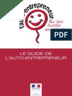 Le Guide de l Auto Entrepreneur