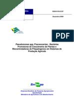 Pseudomonas spp - Bactérias Promotoras de crescimento de plantas e biocontroladoras de Fitopatógenos em sistemas de produção agrícola