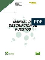 Manual_Descripcion_Puestos.pdf
