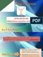 Articulaciones MMSS y MMII.