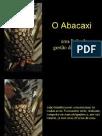 O ABACAXI- uma lição de gestão diferenciada