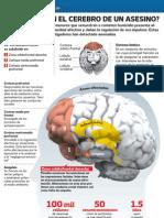 Cerebro Asesino