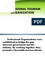 Professional Tourism Organization1 Final