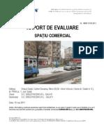 raport_SP_COM_V.Vilcovici_135297547796168200