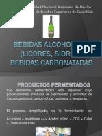 5bebidas-110420165559-phpapp01