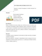DESTILAÇÃO SIMPLES (UTILIZANDO MATERIAL DE SUCATA)
