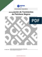 Simulación de Yacimientos de Petróleos Negros - PDVSA CIED