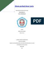 laporan praktikum geologi dasar.docx