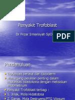 penykit trofoblast