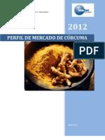 Mercado Curcuma Canales Comercializacion