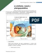 fosaorbitarianasalypterigopalatina[1]