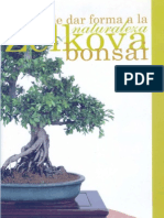 Bonsai Zelkova