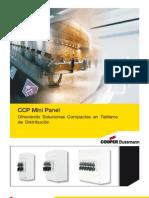 CCP Mini Panel.pdf