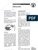 tsprofileAcaciaPubescens.pdf