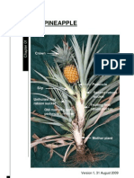 Ch1-The-Pineapple.pdf