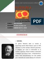 Copia de Diapo de Neisseria.