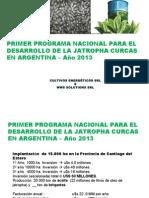 CAF -- Cultivo Jatropha C. en SANTIAGO DEL ESTERO 15.000 Ha ( Sin Valores)