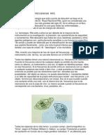 Las_frecuencias_rife.pdf