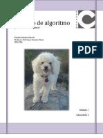 Diseña un algoritmo para bañar un perro