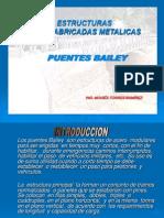 PUENTES BAILEY Exposicion.pdf